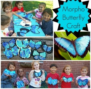 Blue Morpho Butterfly Craft