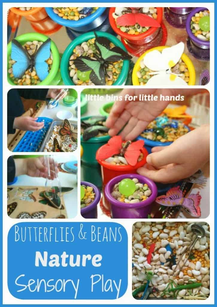butterflies and beans sensory bin