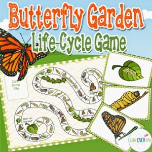 Butterfly Life Cycle printable game