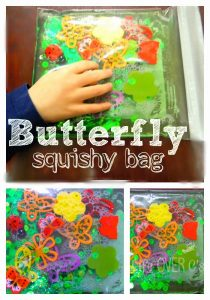 Butterfly squishy bag