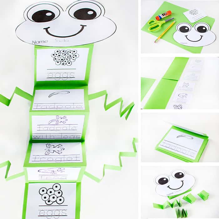 Frog Craft Activities For Preschool