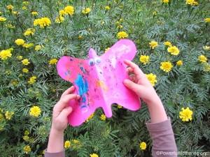 butterfly garden play