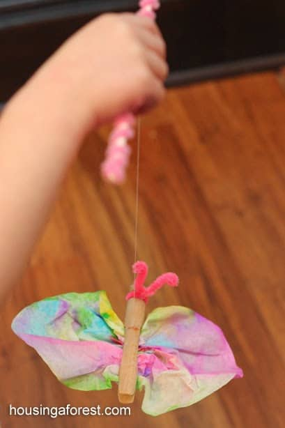 tie-dye butterfly craft