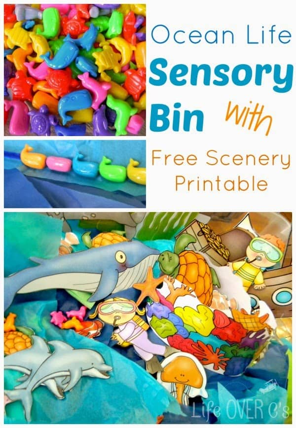 graphic about Free Printable Scenery referred to as Ocean Lifetime Sensory Bin with Totally free Printable Landscapes - Lifetime
