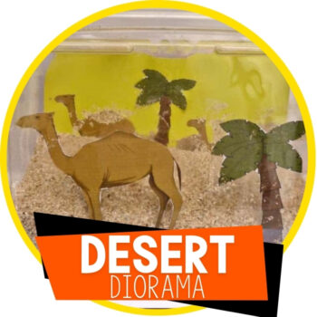 Desert In A Box Featured Image