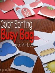 Matching Colors Busy Bag for Toddlers