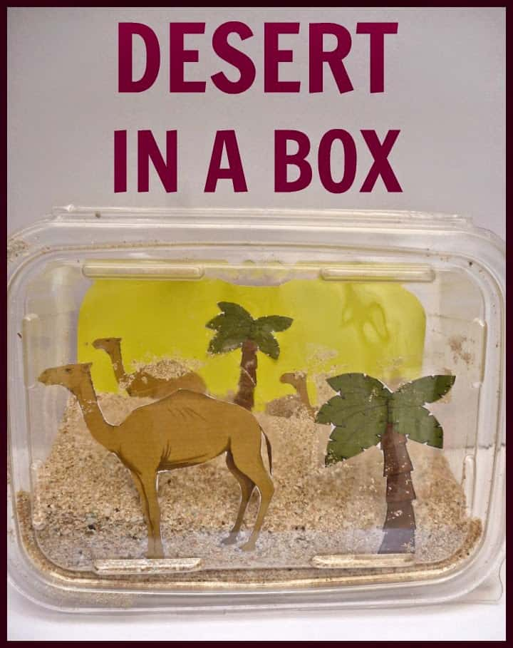 desert diorama for kids