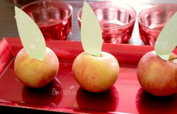 Counting Apples up to 3