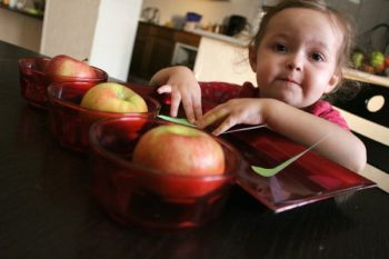 All done counting apples