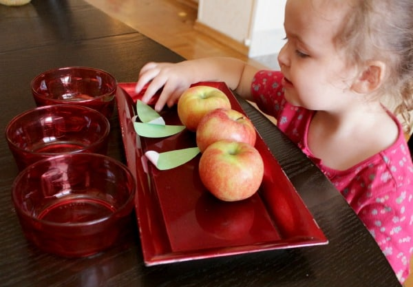 preschooler Counting apples and leaves on a tray