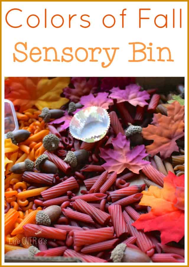 colors of fall sensory bin