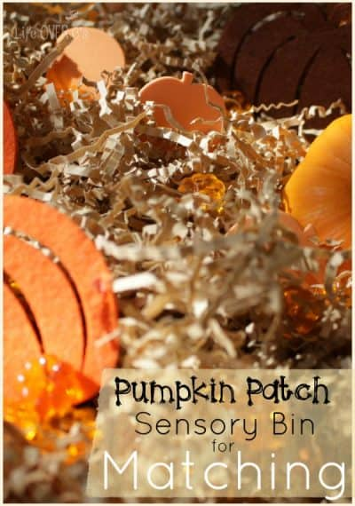 Pumpkin patch sensory bin for exploring matching items with preschoolers.