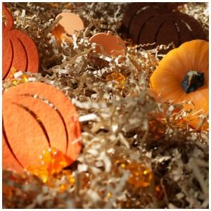 Pumpkin patch sensory bin for preschoolers