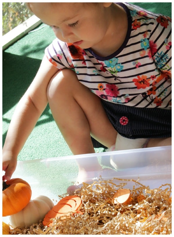 Practice stacking with a fun pumpkin sensory bin.