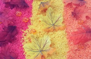 colors of fall sensory bin feature