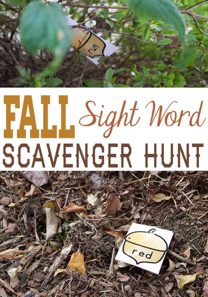 free fall sight word scavenger hunt