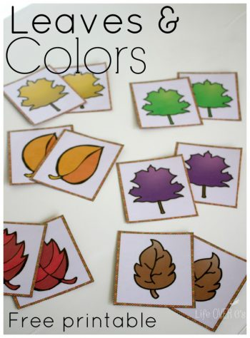 Explore the colors of fall with these fun fall colors printables.