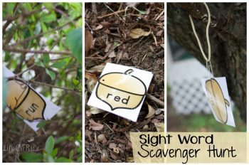Explore the sights and textures of fall while doing this sight word scavenger hunt!
