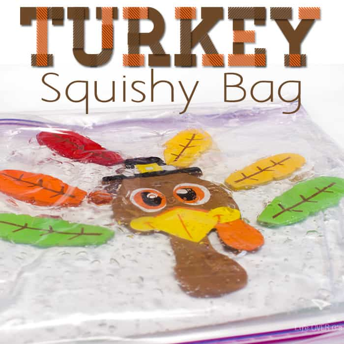 Make a Turkey Sensory Squishy Bag Activity