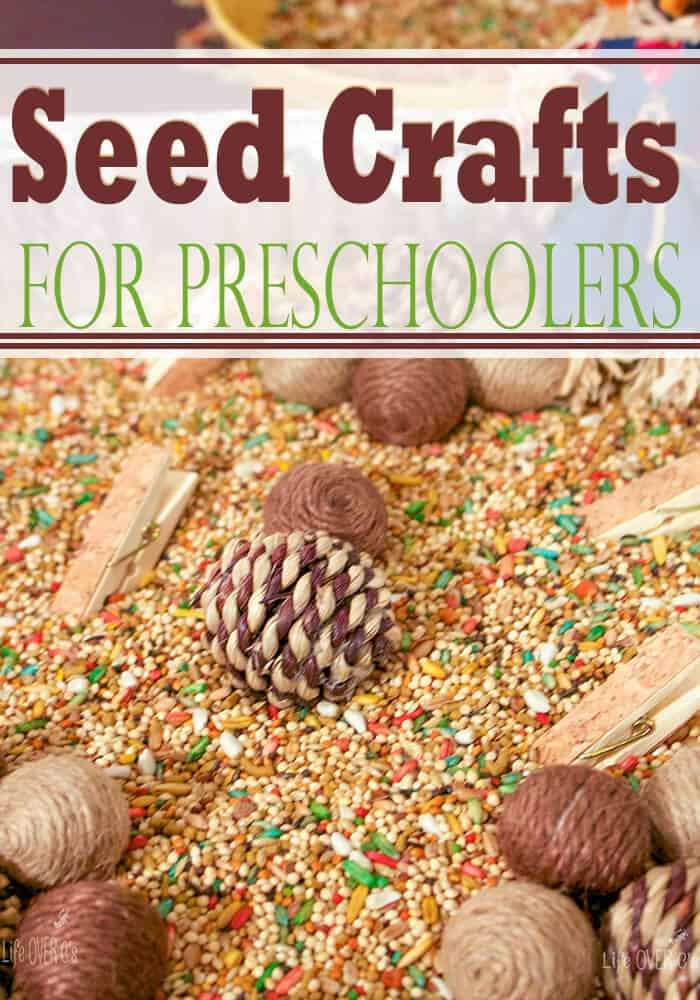 3 Seed Crafts for Preschoolers! Such fun ideas to add to our fall theme!