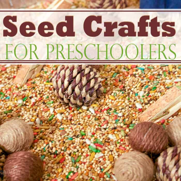 3 Seed Crafts for Preschoolers