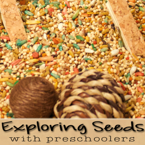 3 fun activities with seeds for you to do with your preschoolers. Build pre-writing skills while doing crafts.