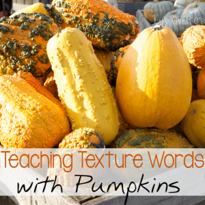 Learn about texture words with pumpkins and your sense of touch!