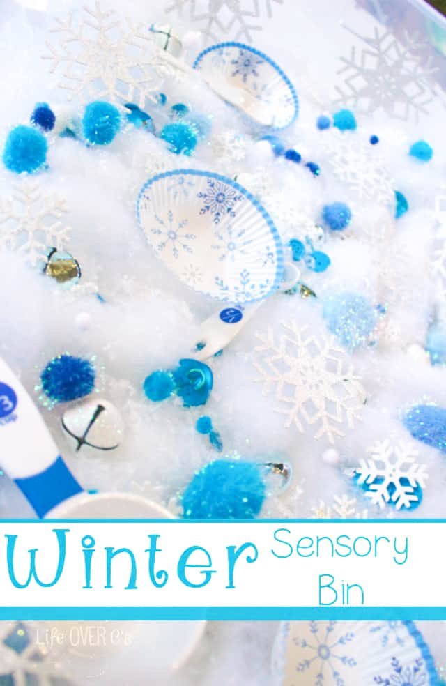 Snowflake Sensory Bin