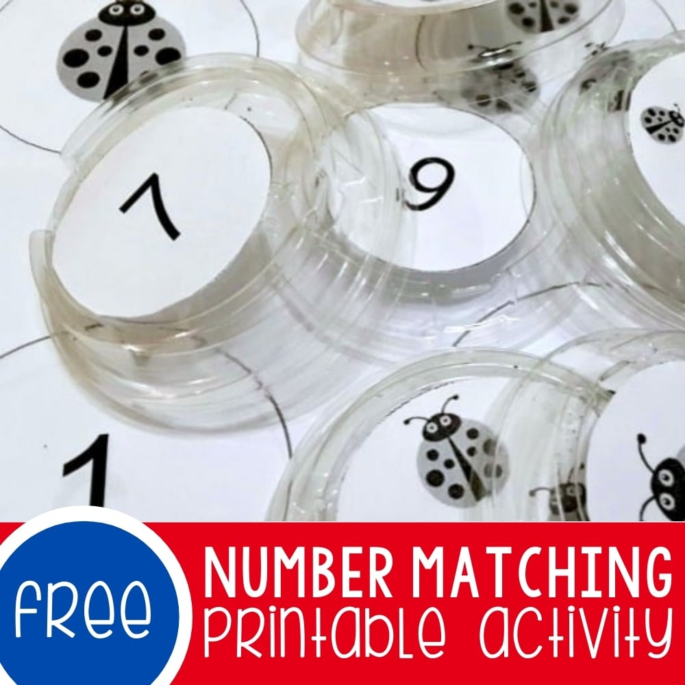 Number Matching Game for Preschoolers Featured Square Image