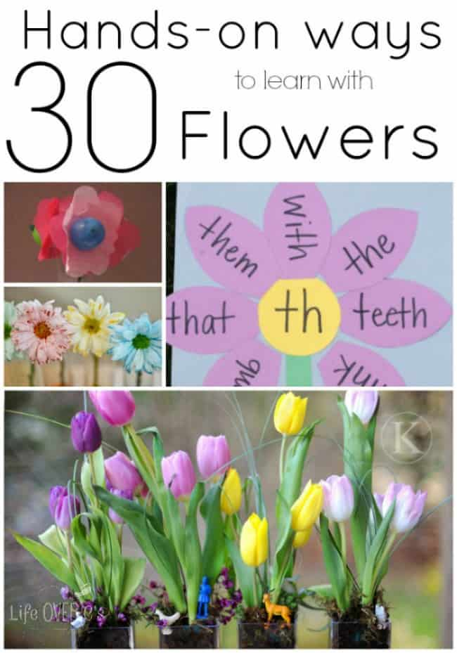 30+ Hands-On Flower Activities for Learning