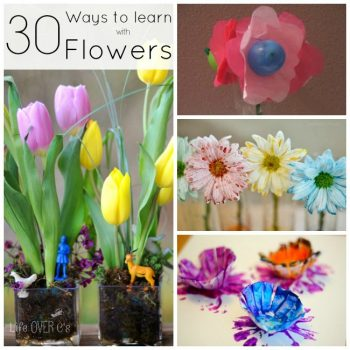 30 Hands-on flower activities will make a great addition to your spring learning time!