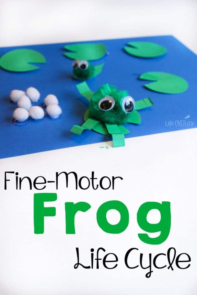 Fine motor frog life cycle craft for Frog crafts for preschoolers