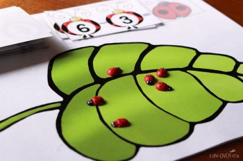 This ladybug subtraction printable is so adorable! What a fun way to practice subtraction facts!