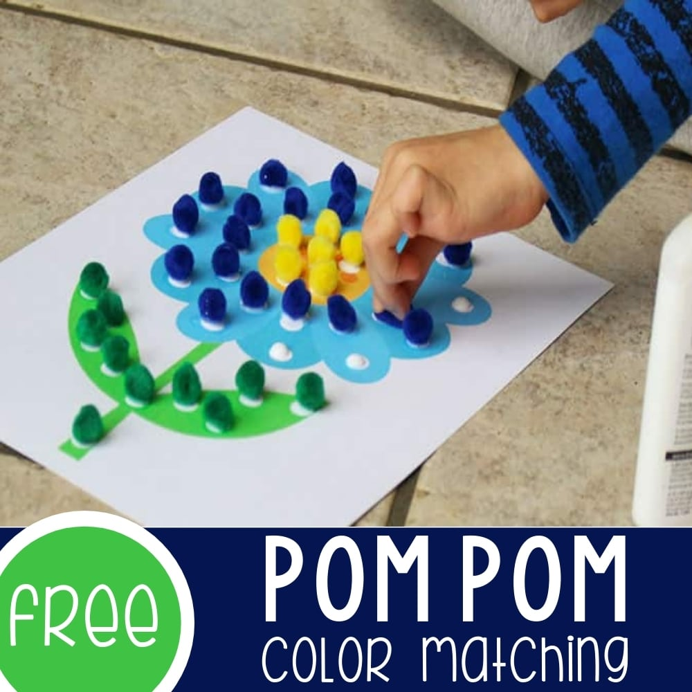 Learning Colors with Pom Poms Featured Square Image