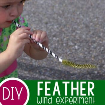 The Feather Experiment_ Learning about Wind Featured Square Image