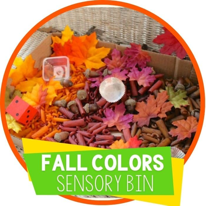 Colors of Fall Sensory Bin for Preschoolers