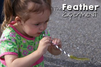 This feather experiment is great for learning about wind and air currents!