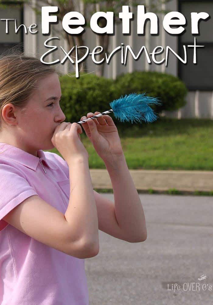 This feather experiment is a great way to learn about the wind and air currents!