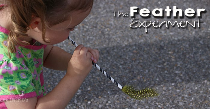 feather-pinfb