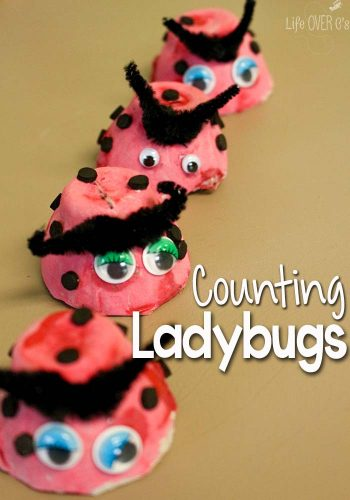 These super cute ladybugs are perfect for use as math manipulatives! Counting ladybugs is a fun preschool math activity!