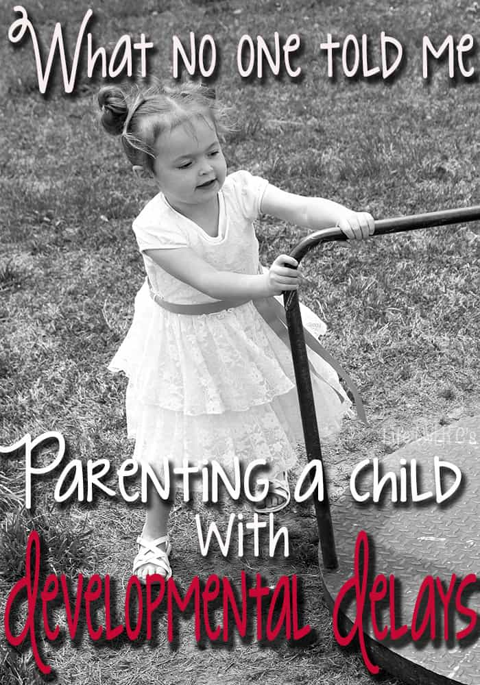 What No One Told Me: Parenting a Child with Developmental Delays