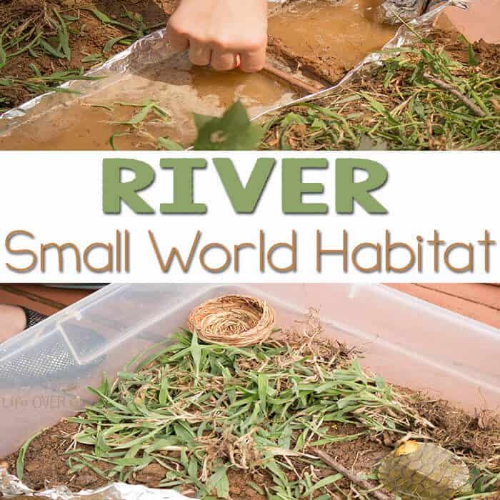 Explore this river small world habitat with your kids!