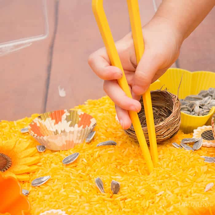 sunflower-sensory-bin-square