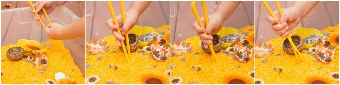 Using tongs is a great way to work on fine-motor skills. Lots of opportunities for skill building in this sunflower sensory bin.