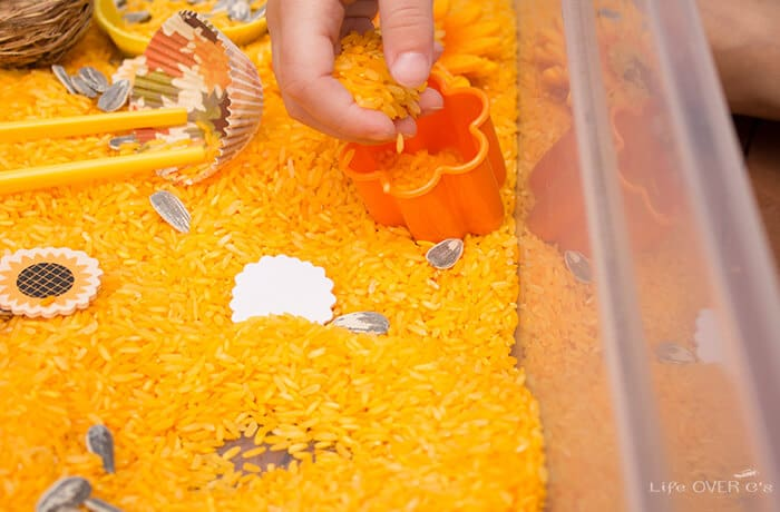 Build fine motor skills while playing with this sunflower sensory bin.