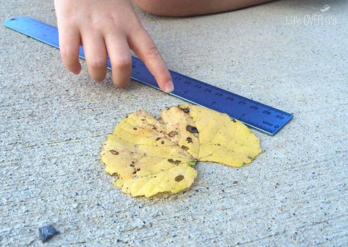 Fall is the perfect time to head outside! Using leaves of various sizes, introduce kids to important measurement concepts such as sorting, measuring and perimeter!
