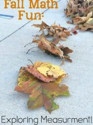 Fall Math: Exploring Measurement with Leaves