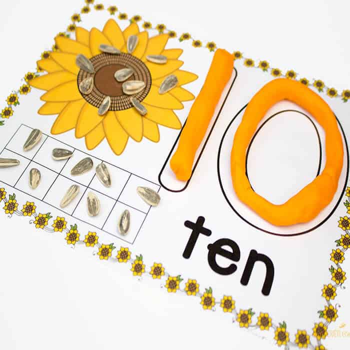 These free printable sunflower play dough mats for numbers 1-10 are great! There are so many ways to use them. Words, number recognition, counting and ten-frames!