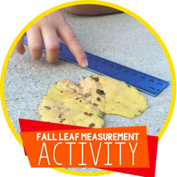 Exploring Measurement with Leaves Featured Image