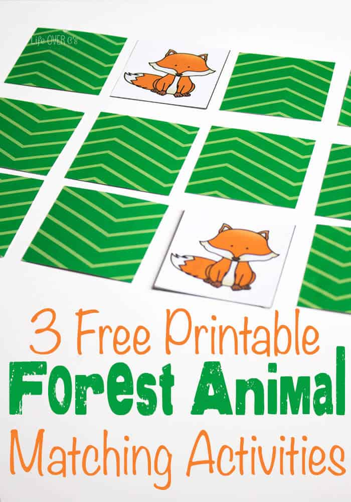 http://lifeovercs.com/wp-content/uploads/2015/10/Forest-Animal-Matching-Pack.pdf
